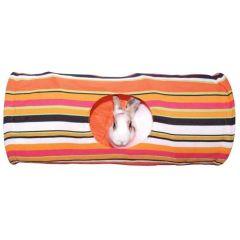 Kanintunnel med kanin