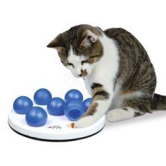 Aktivitetsspill katt