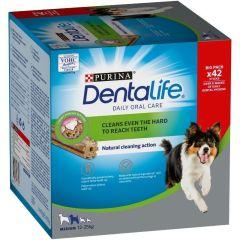 Dentalife Big Pack Medium 42stk