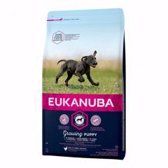 Eukanuba Growing Puppy Large Breed