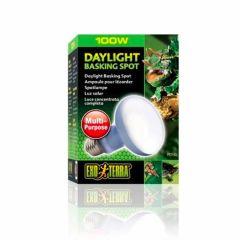 Exo Terra Daylight Basking Spot 100W m/UVA