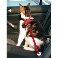 Sikkerhetssele til katt