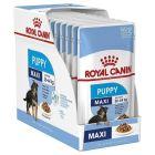 Royal Canin Maxi Puppy Våtfôr