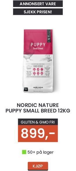 Nordic-nature-puppy-small-breed