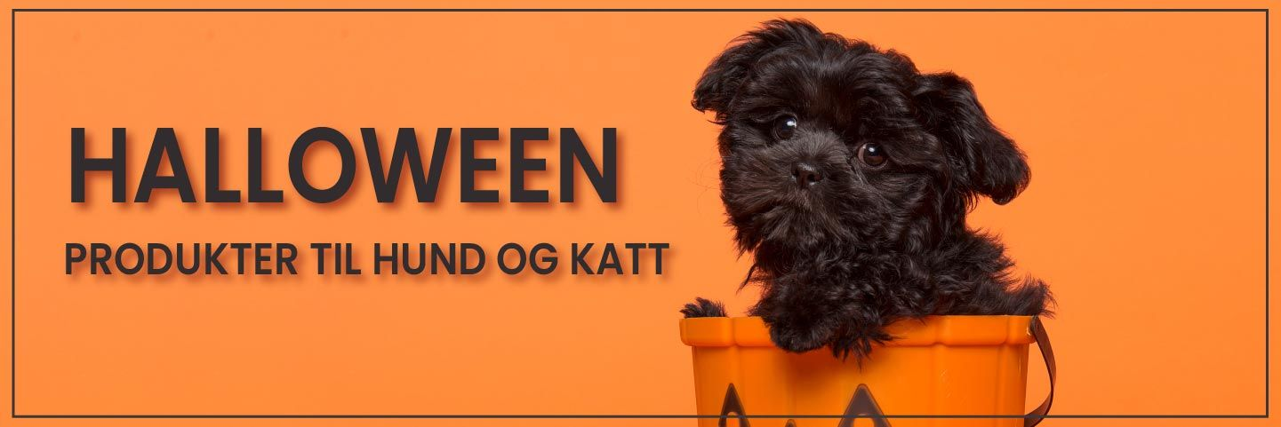 Halloween produkter