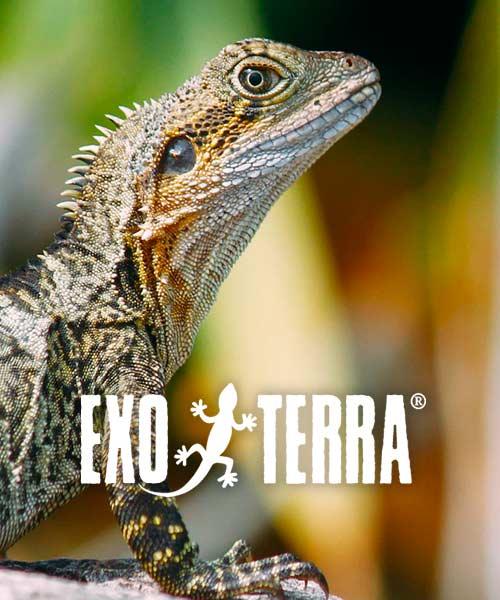 exo_terra